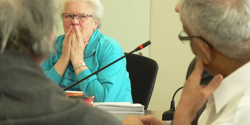 Hamilton's age-friendly strategy must address diverse senior communities, say committee
